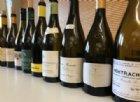 Le Montrachet, il vino bianco più prezioso e più costoso del pianeta Terra