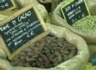 Le proprietà di Catuaba, Noci di Cola e Fave di Cacao al Festival dell'Oriente