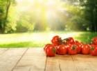 Contro l'infertilità, i pomodori