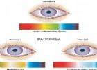 Come faccio a capire se mio figlio è daltonico? I sintomi e la diagnosi di daltonismo