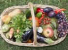 La dieta vegana pare non sia così ecologica