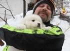 Rigopiano, sotto l'hotel i Vigili del Fuoco salvano tre cuccioli di pastore abruzzese