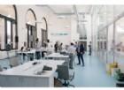 Accelerazione per startup a Luiss Enlabs, come partecipare alla call