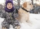 Quando cammini con il tuo cane ma ami terribilmente le pozzanghere