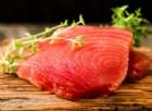 Rischio con il tonno fresco dalla Spagna: 105 persone già intossicate. Attenzione se lo avete comprato