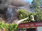 Incendio al parco Posatora di Ancona, i piromani sono una baby gang. Tre fermi