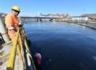 Genova, bloccate 15 tonnellate di merce pericolosa al porto