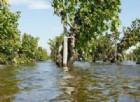Caldo record, Coldiretti: danni per agricoltori dopo l'ondata di maltempo a Nord