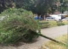 Ravenna, violento temporale e grandine: vento a oltre 100 km/h