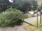 Il maltempo che ha colpito la città di Torino nei giorni scorsi