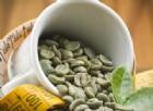 Caffè verde: un vero dimagrante naturale? Le risposte della scienza