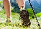 Nordic Walking o camminata nordica. La tecnica e i benefici
