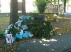San Donà di Piave, residente abbandona un cumolo ramaglie: 500 euro di multa