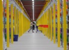 Google e Walmart si alleano contro Amazon: lo shopping del futuro è «vocale»
