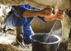 Latte non pastorizzato: due bimbi in ospedale. Sale a 5 il bilancio delle vittime da Seu in Puglia