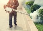 Bologna, caso di Dengue: scatta la disinfestazione
