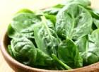 Attenzione agli spinaci Ortofin 'Buongiorno Freschezza' contengono un'erba velenosa