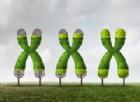 Il segreto della longevità? La proteina Klotho. In più, preserva la salute del cervello