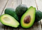Dieta dell'avocado: 3 motivi per cui dovresti mangiarlo ogni giorno. Previene cancro e protegge il cuore