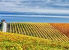 visittuscany.com, il nuovo sito di destinazione della Toscana