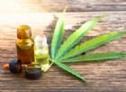 Fibromialgia, l'incredibile storia di Rosanna: «Con la Cannabis sono rinata»