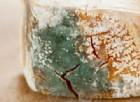Ammoniaca e muffe in formaggi e latticini, sequestrati dai Nas 15 mila chili
