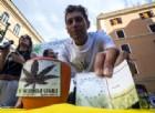 Sì alla cannabis ad uso terapeutico, la Camera approva la proposta targata Pd