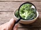 Attenzione agli alimenti ricchi di pesticidi, possono causare il Parkinson