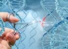 «Così cureremo le malattie metaboliche», gli scienziati modificano il DNA direttamente su un uomo