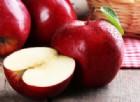 Rinasce la Cabellotta, la mela Doc della Valbrevenna è salva