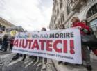 M5S si scaglia «contro le bufale» sul terremoto della deputata Pd De Micheli