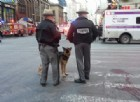 New York, attentato a Manhattan: ecco chi è l'attentatore