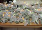 Aveva in casa 9 kg di marijuana: arrestato un 39enne di Ruda