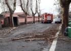 Maltempo: Roma, gravi disagi tra spazzatura in strada e metro allagate
