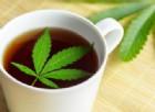 Marijuana, rivoluzione in California: diventa finalmente «legale»