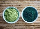 La startup friulana che produce l'alga spirulina sfida Las Vegas