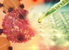 Tumore del fegato, nel veronese al via le sperimentazioni per il vaccino