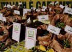 Etichette obbligatorie per pasta e riso. Coldiretti: bene, ma Ue ancora incerta e contraddittoria