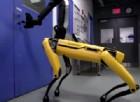 Grazie Boston Dynamics, ora siamo davvero spacciati