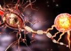 Lotta alla sclerosi multipla, ricercatori scoprono come riparare la mielina