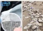 Rifiuti: i dischetti di plastica ritrovati sono filtri di un depuratore