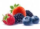 Mangiare i frutti di bosco può prevenire il cancro. Lo studio