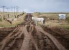 Il Mondiale Rally sulla massacrante terra argentina