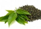 Le nanoparticelle di foglie del tè potrebbero essere la nuova cura per il cancro ai polmoni