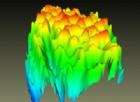 Svelate le trasformazioni cellulari all'origine dello sviluppo delle metastasi