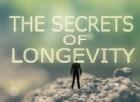 Longevità, scoperta la proteina che rallenta l'invecchiamento e allunga la vita