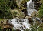 Le bellezze della natura lungo il sentiero per lago delle Bose