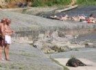 Carcassa di cinghiale in acqua, stop al bagno in valle Stura per almeno una settimana