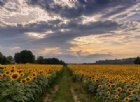 Gli scatti più belli del weekend biellese