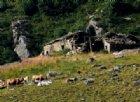 I resti dell'Alpe Truc in Valle Oropa
